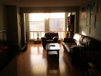1 Bdr, 800 Sq/ft Yonge/College, Furnished, Utilities, Cable Incl