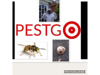 Pest control Leicester-Leicestershire pest control- rats-wasps- mice- squirrels-