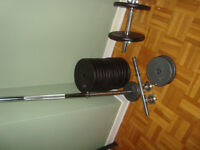 Poinds fonte dumbbells 160 lbs