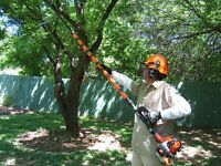 Storm Cleanup - Tree Service - Gutter Cleaning