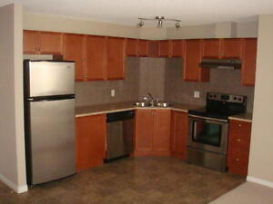 Beautiful 2 Bed/ 2 bath/ 2 parking condo in South Terwillegar