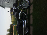 2010 honda shadow 750