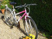 Ladies British Eagle Cycle.