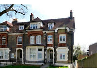 Amazing Large Studio apartment with separate kitchen and garden in Finsbury Park N4