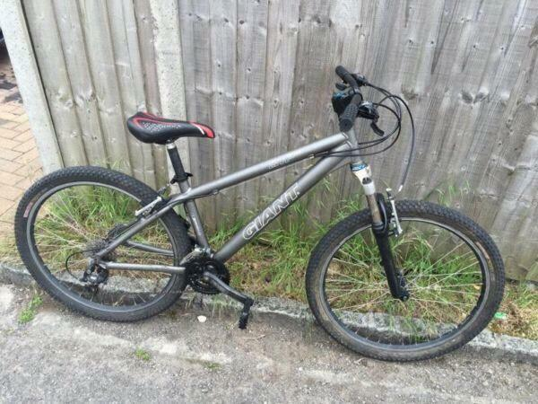 Giant Stp Se Jump Mountain Bike Fully Serviced In Woodstock