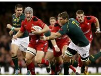 WALES v S. AFRICA - ***CAT A - BEST MIDDLE TIER PAIR***