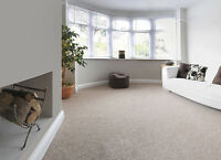Carpet and Upholstery Steam Cleaning on LOW!LOW!LOW! PRICE