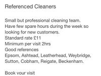 Family run cleaning and ironing services