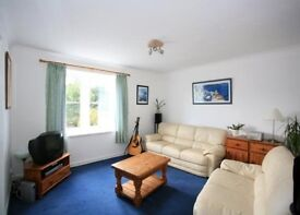 Beautiful south facing 2 bedroom flat for rent - Centrally located with private parking