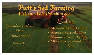 Quality sod  and landscaping