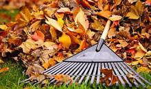 Eastern Suburbs Garden Maintenance Services Botany Botany Bay Area Preview