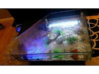 Table fish tank for sale