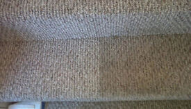 PROFESSIONAL CARPET CLEANING IN WORCESTER - 07907 295336