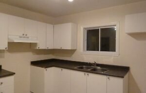 Spacious, Clean, 2 Bedroom apartment for rent