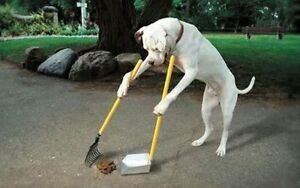 Poodini - Dog Poo Cleaning Services
