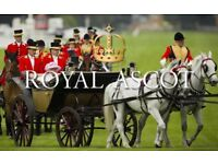 3 x Windsor Enclosure Tickets for today at Royal Ascot