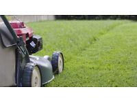 Garden maintenance available grass cutting / pruning / trimming hedges gardener