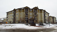 100 DENHOLM GATE #207 - FULLY FURNISHED 2 BEDROOM CONDO