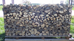 Dry Firewood Ready for this Season