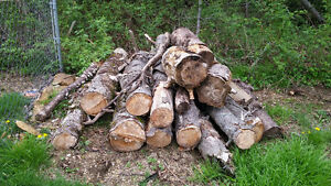 Pile of Fire wood. Make me an offer.