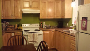 ROOM DOWNTOWN! -- Beautifully renovated cute downtown home St. John's Newfoundland image 4