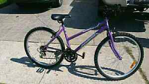 Supercycle 24 inch Mountain Bike