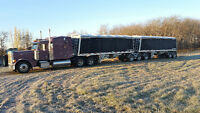Custom Grain Hauling At Great Rates!!