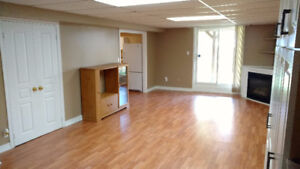 1 Bed Room brand new basement apt.with fireplace