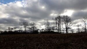 FANTASTIC 47 ACRE PARCEL ON THE EDGE OF TOWN Kitchener / Waterloo Kitchener Area image 5