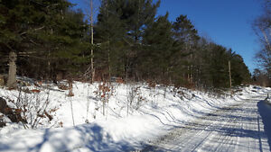 5 acre lot overlooking Little Panage
