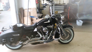 Trade for softail or sell