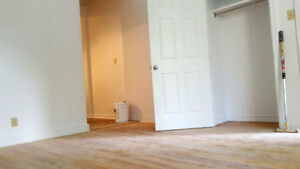 Renovated bright South end - Available now
