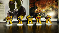 Imperial Fists V company Tactical Squads
