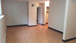 freshly painted 1 bedroom apartment in Meadow lake