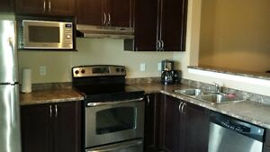Beautiful 900 sqft 1 Bedroom + Den Fully Furnished Condo