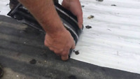 Bed Liner Removal