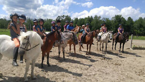 Riding Lessons, Summer Camp, Saturday Horse Club For Kids