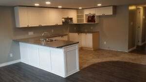 BRAND NEW 2 Bedroom Apartment for RENT - $1300