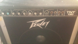 Peavey TNT 130w Bass amplifier with Black Widow speaker.