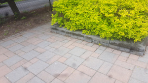 Perfect interlock for sale and 120 retaining wall and coping