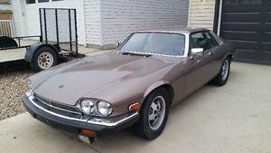 1985 Jaguar XJS V12