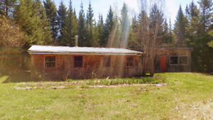 45 acres of forest and cottage + income potential