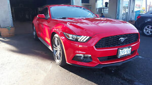 2016 Ford Mustang PREMIUM ECOBOOST AMAZING LEASE TRANSFER