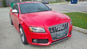2008 Audi S5 Coupe - Manual - Fully Loaded