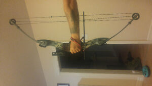 Hoyt impulse composite bow with accessories