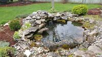 Pond Cleaning Packages & Pond Re-Builds