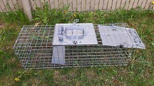 cage trappe