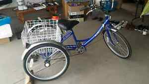 Parklane Adult tricycle with 5 spd Shimano
