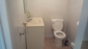 Spacious must see downtown Kitchener basement apartment! Kitchener / Waterloo Kitchener Area image 4