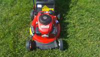 Grass cutting great prices